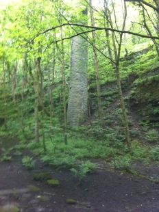 Mill chimney