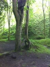 Mill path 2