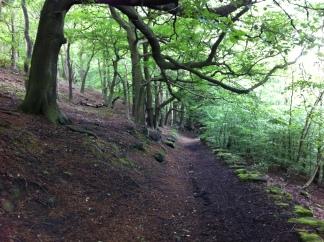 Path to Northwaite