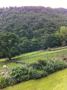 Terrace and field: Richard's wedding reception
