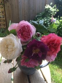 Roses in jug
