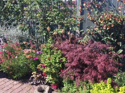 Deal Gardens 2