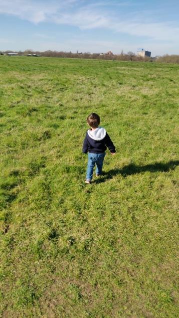 Ellis walk